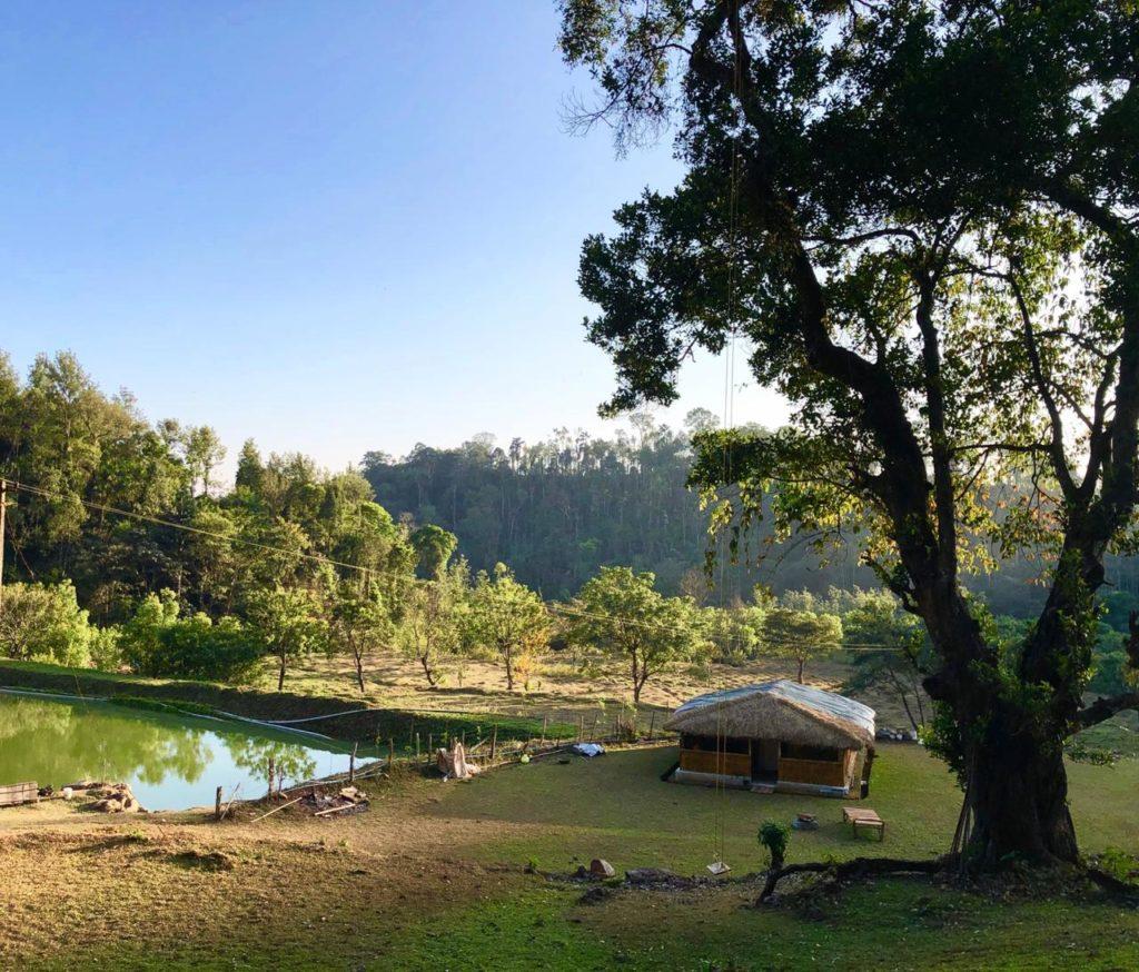 Lake side Bamboo cottage